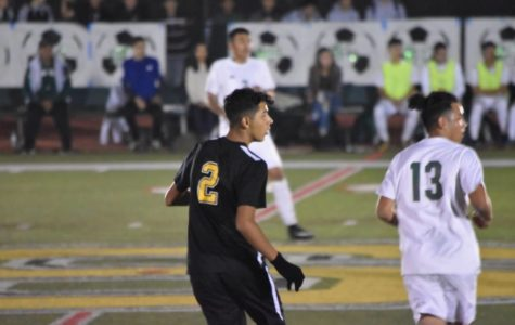 Sports Spotlight: Gustavo Navarro