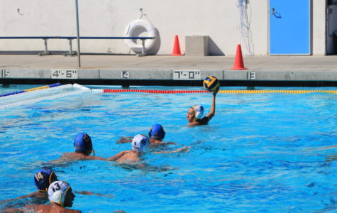 Waterpolo Gains New Players and New Challenges