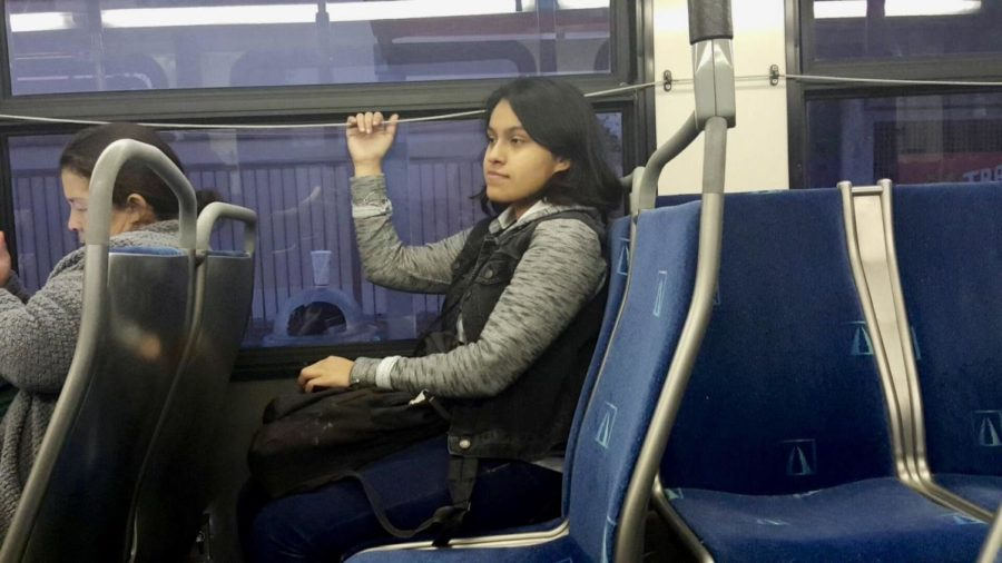 Taking the Bus Leads to Unwanted Adventure