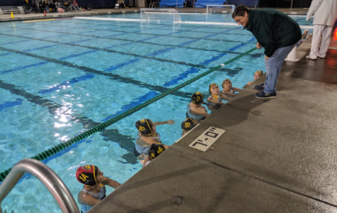 New Coach Dives into a Challenging Season for Girls' Water Polo
