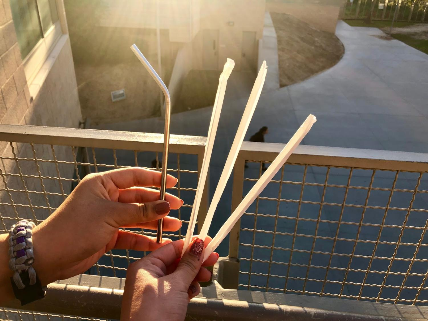 Metal vs. Plastic Straw, plastic only does more harm than good.