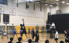 Volleyball Spikes their Way to Success