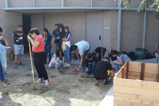 Gardening Club prepares the terrain for new plants on the way on Wednesday's after school meeting. September 25, 2019
