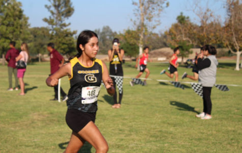 Fall sports conclude, with new records and crushing losses