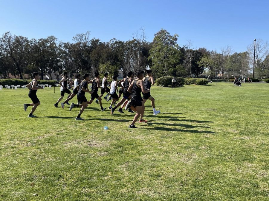 Boys cross country team starting their race at Central Park in Huntington Beach, Calif. Photo taken March 18, 2021 at 3:43 p.m.